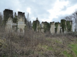 20160215005 Ruines Horte_DxO